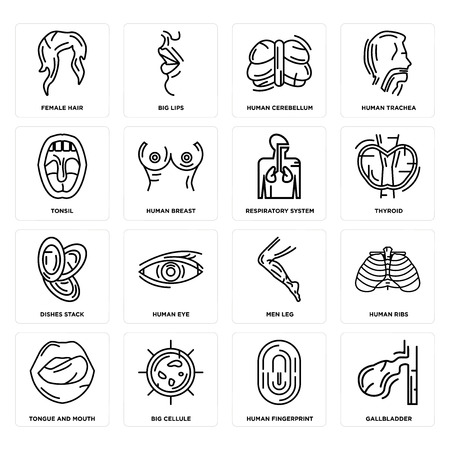 Set Of 16 simple editable icons such as Gallbladder, Human Fingerprint, Big Cellule, Tongue and Mouth, Ribs, Female Hair, Tonsil, Dishes Stack, Respiratory System can be used for mobile, web UI Ilustração