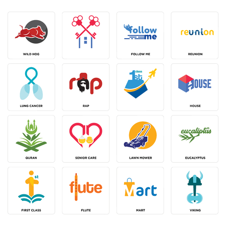 Set Of 16 simple editable icons such as viking, mart, flute, first class, eucalyptus, wild hog, lung cancer, quran, can be used for mobile, web UI