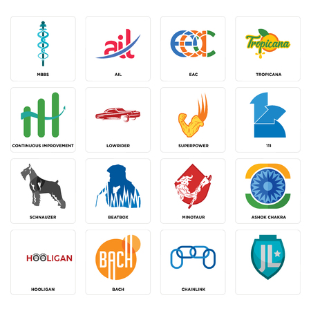Set Of 16 simple editable icons such as, chainlink, bach, hooligan, ashok chakra, mbbs, continuous improvement, schnauzer, superpower can be used for mobile, web UI Illustration