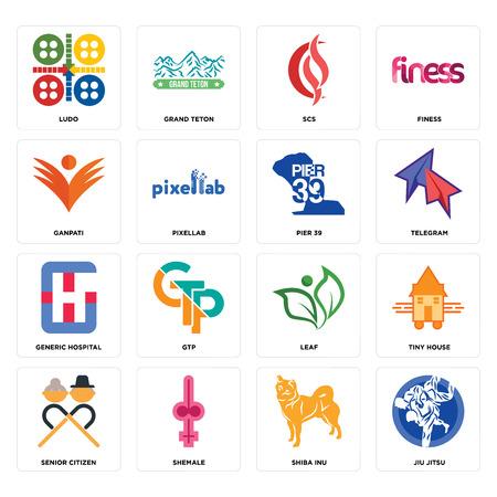 Conjunto de 16 iconos editables sencillos como jiu jitsu, shiba inu, transexual, jubilado, casa diminuta, ludo, ganpati, hospital genérico, pier 39 puede utilizarse para móviles, la interfaz de usuario web