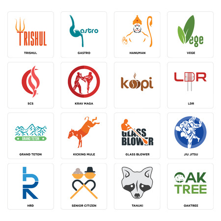 Set Of 16 simple editable icons such as oaktree, tanuki, senior citizen, hrd, jiu jitsu, trishul, scs, grand teton, can be used for mobile, web UI