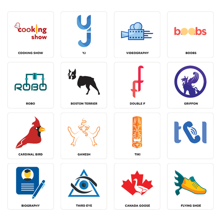 Set Of 16 simple editable icons such as flying shoe, canada goose, third eye, biography, , cooking show, robo, cardinal bird, double f can be used for mobile, web UI