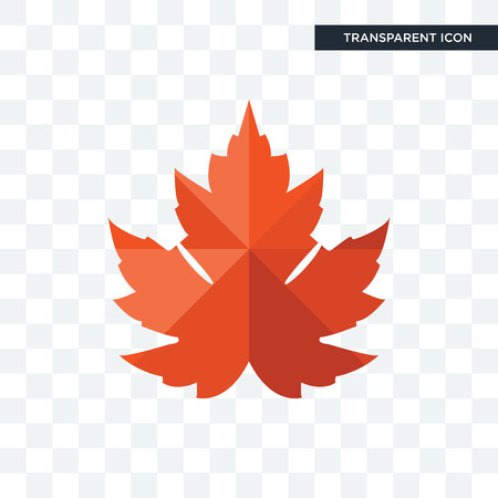 maple leaf vector icon isolated on transparent background, maple leaf logo concept