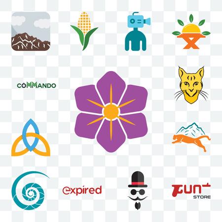 Ensemble de 13 icônes modifiables transparentes telles que safran, magasin d'armes à feu, monsieur, expi, coquille de nautile, lion de montagne, sainte trinité, lynx, commando, pack d'icônes web ui
