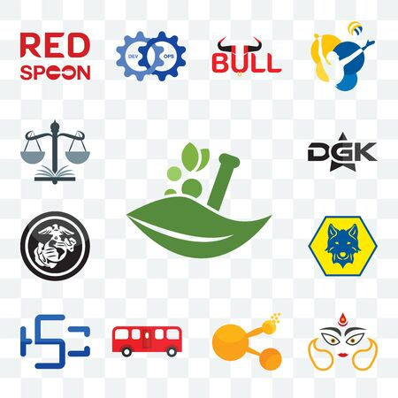 Set Of 13 transparent editable icons such as ayurvedic, durga, bitconnect, bus, hsc, cub scout, usmc, dgk, naacp, web ui icon pack