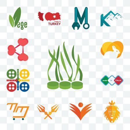 Set Of 13 transparent editable icons such as spirulina, judah and the lion, ganpati, trishul, mini mart, made in italia, ludo, rabit, share png, web ui icon pack