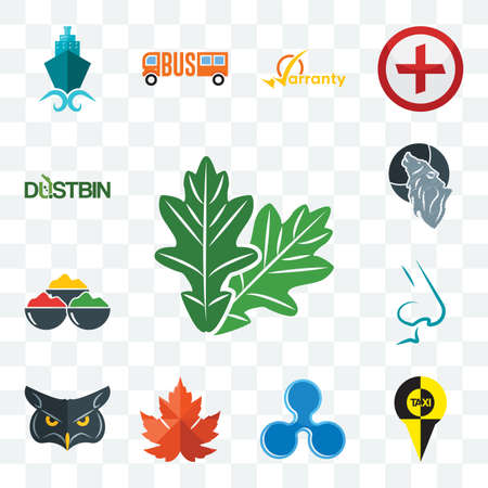 Set Of 13 transparent editable icons such as oak leaf, , ripple, maple nose, spice, wolf, dustbin, web ui icon pack
