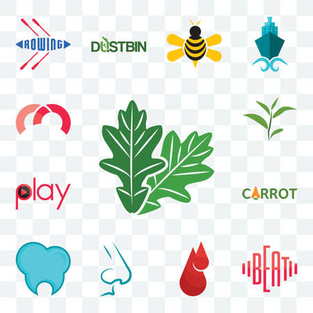 Set Of 13 transparent editable icons such as oak leaf, beat, blood drop, nose, dental clinic, carrot, play, tea m, web ui icon pack