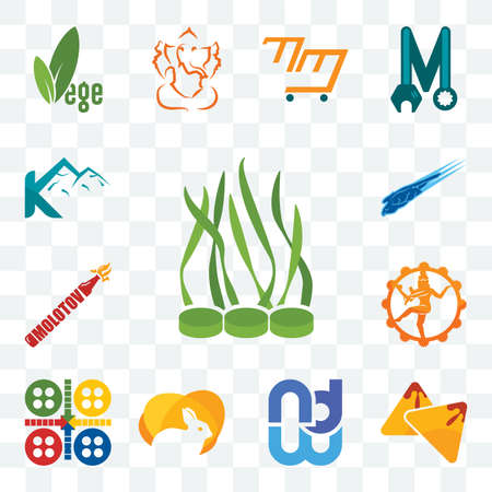 Set Of 13 transparent editable icons such as spirulina, samosa, wnd, rabit, ludo, nataraj, molotov, peregrine falcon, k mountain, web ui icon pack