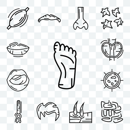 Set Of 13 transparent editable icons such as Human Foot, Small Intestine, Men Knee, Hair, Rod Cell, Big Cellule, Tongue and Mouth, Thyroid, Lips, web ui icon pack