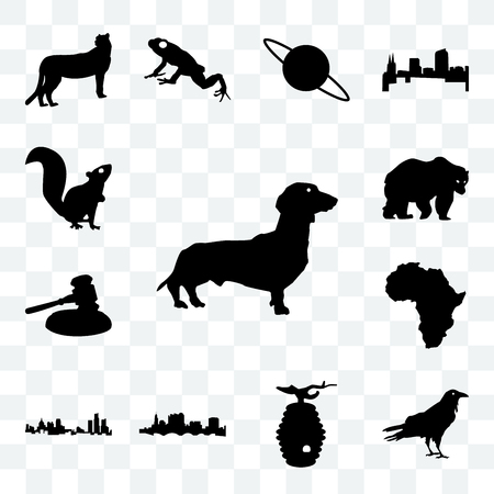 Set Of 13 transparent icons such as dachshund outline on white background, raven beehive web ui editable icon pack, transparency set