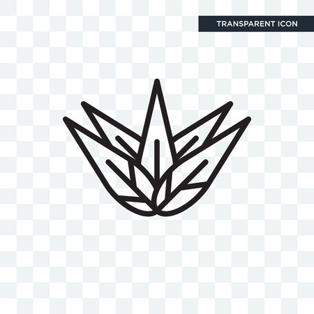 Agave vector icon isolated on transparent background