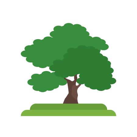 Vector icono de árbol de nogal negro aislado sobre fondo blanco para su diseño web y aplicaciones móviles, concepto de logo de árbol de nogal negro Logos