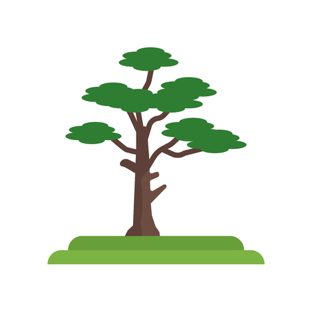 Pitch Pine tree icon vector isolated on white background for your web and mobile app design, Pitch Pine tree logo concept