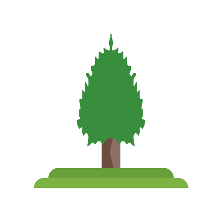 Balsam Fir tree icon vector isolated on white background for your web and mobile app design, Balsam Fir tree logo concept