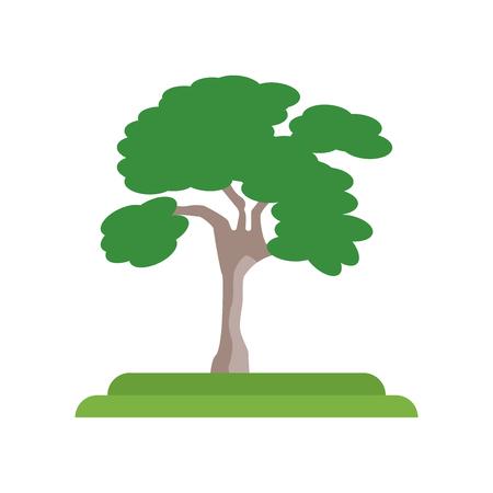 Vector icono de árbol de olmo americano aislado sobre fondo blanco para su diseño web y aplicaciones móviles, concepto de logotipo de árbol de olmo americano