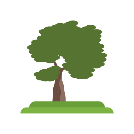 Slippery Elm tree icon vector isolated on white background for your web and mobile app design, Slippery Elm tree logo concept