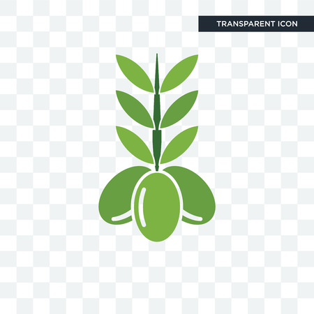 olive vector icon isolated on transparent background  イラスト・ベクター素材