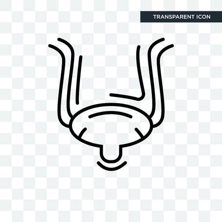 Bladder vector icon isolated on transparent background, Bladder logo concept