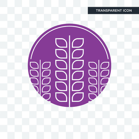 lavender vector icon isolated on transparent background, lavender logo concept