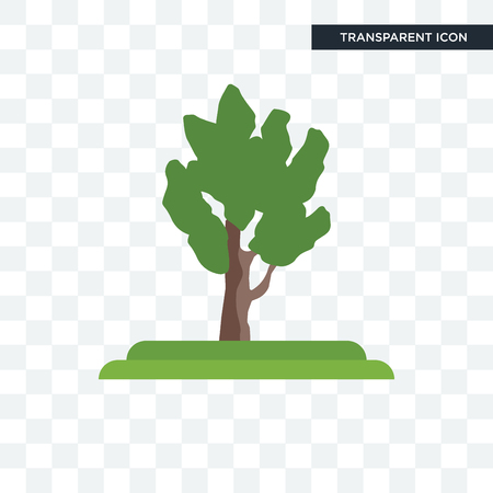 Eastern Cottonwood tree vector icon isolated on transparent background, Eastern Cottonwood tree logo concept
