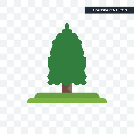 Eastern cedar tree vector icon isolated on transparent background, Eastern cedar tree logo concept