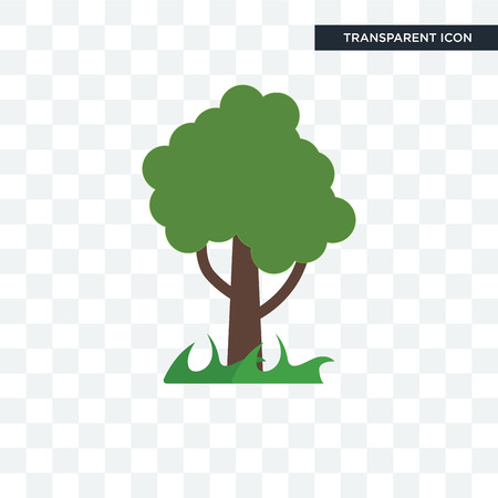 Tree vector icon isolated on transparent background, Tree logo concept
