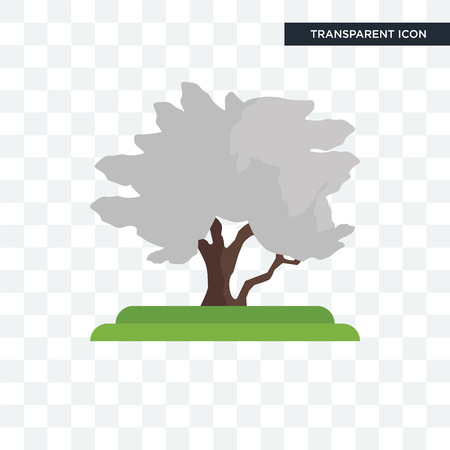 Hawthorn tree vector icon isolated on transparent background, Hawthorn tree logo concept