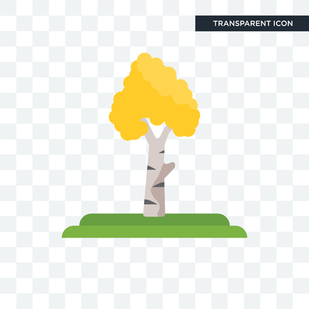 Birch tree vector icon isolated on transparent background, Birch tree logo concept