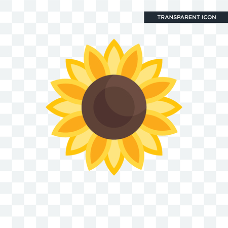 Sunflower vector icon isolated on transparent background, Sunflower logo concept