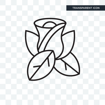 Rose vector icon isolated on transparent background, Rose logo concept 向量圖像