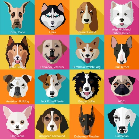 bull dog: Set of flat popular breeds of dogs icons. Vector illustration.