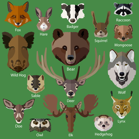 animales del bosque: Conjunto de animales del bosque se enfrenta a iconos aislados. Dise�o de estilo Flat. Ilustraci�n del vector. Vectores