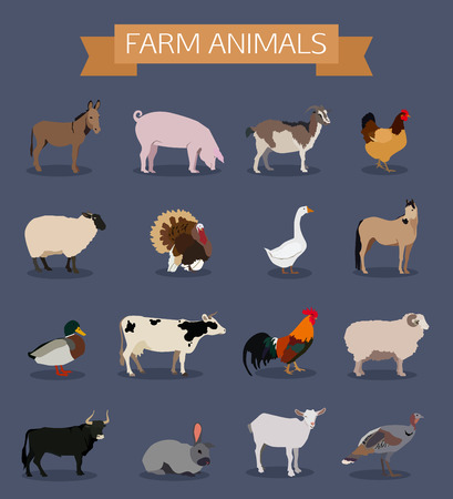 shire horse: Set of farm animals icons. Flat style design. Vector illustration.