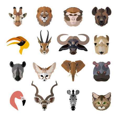 hornbill: Set of african animals faces isolated icons. Flat style design. Vector illustration. Illustration