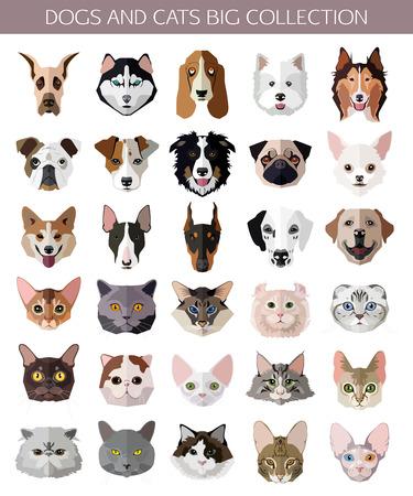 고양이와 개 아이콘의 평면 인기있는 품종의 설정. 벡터 일러스트 레이 션. 일러스트