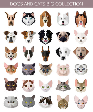 siamese: Set of flat popular Breeds of Cats and Dogs icons. Vector illustration.