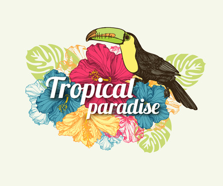 romantic beach: Tropical summer typographical background with hand drawn tropical flowers hibiscus, toucan bird and place for text. Vector illustration. Illustration