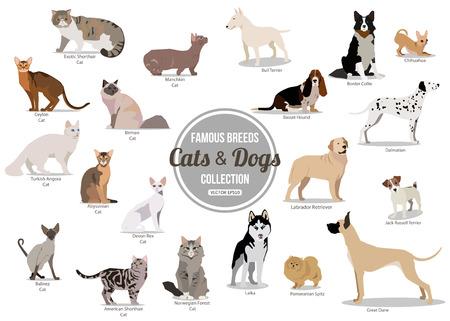 Conjunto de plano sentado ou andando bonito dos desenhos animados cães e cães. Raças populares. Estilo simples design isolado ícones. Ilustração vetorial Ilustración de vector