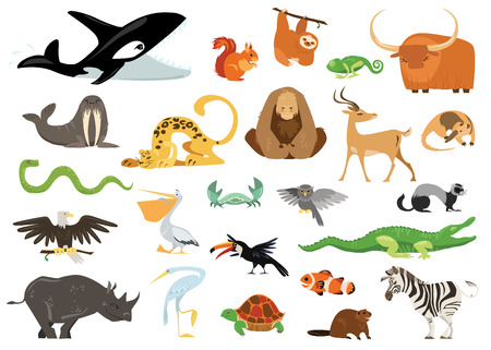 ocean background: Set of cute cartoon animals, snakes, birds, fishes inhabiting planet earth. Tropic, exotic, arctic, ocean flora and fauna. Cheerful crocodile, killer whale, gorilla icons isolated on white background.