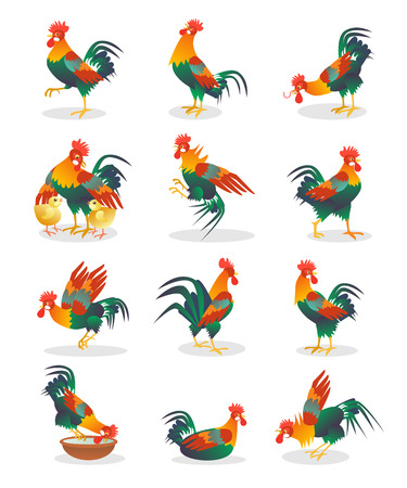 crowing: Set of Rooster cartoon flat icon isolated on white background vector illustration