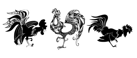 ollection: ollection of hand drawn roosters. Roosters isolated on white background. Illustration