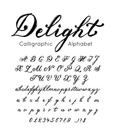 Vector elegant font and alphabet.