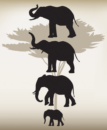 Elephant silhouettes in different poses and a large acacia tree placed behind them. Illustration