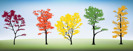 Five different trees with a grass hill and sky. Illustration