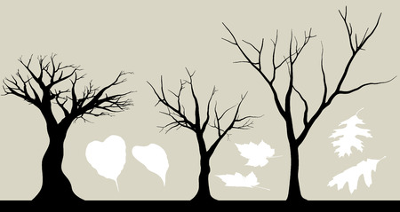 Silhouette of Trees and Leaf Objects