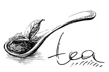 wooden spoon with tea leaves in graphic style, hand-drawn vector illustration.