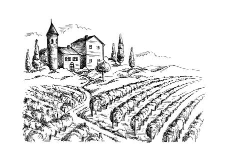 Hileras de plantas de uva de viñedos y el castillo de estilo gráfico, ilustración vectorial dibujado a mano.