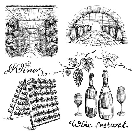 Set of wine bottles and barrels in winery or cellar in graphic style hand-drawn vector illustration