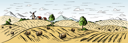 Colorful Rural landscape field wheat in graphical style. Hand drawn and converted to vector Illustration.
